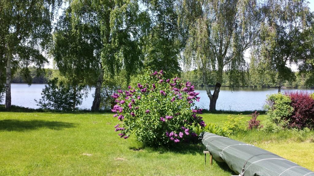 Augstfelde, Vierer See